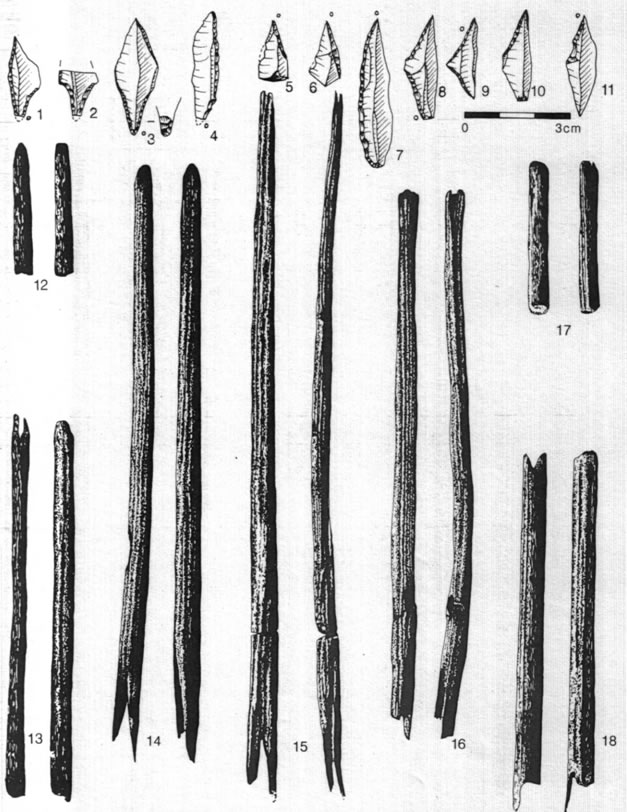 arrows from Stellmoor (after Rust 1943)