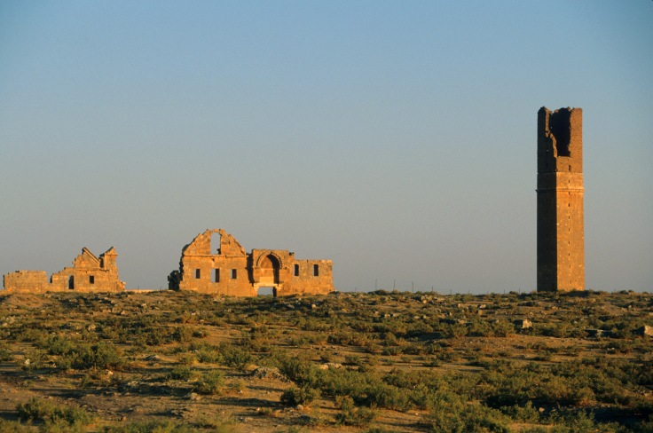 Ruins of Anatolia's oldest mosque: TUR / HARRAN